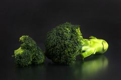 Fresh broccoli with a black background stock photos