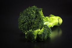 Fresh broccoli with a black background stock image