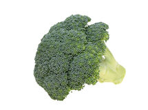 Fresh broccoli Royalty Free Stock Photos