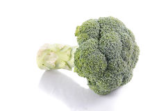 Fresh broccoli in closeup. Fresh broccoli on isolate background Stock Photo