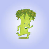 Fresh broccoli 01 Stock Image