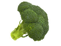 Fresh broccoli floret on white Royalty Free Stock Images