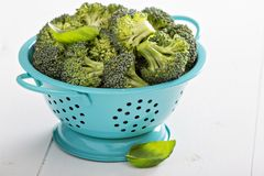 Fresh broccoli florets in blue colander Royalty Free Stock Photo