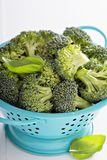 Fresh broccoli florets in blue colander Stock Images