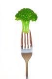 Fresh broccoli on a fork Stock Photography