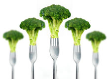 Fresh broccoli on fork isolated on white Stock Photos