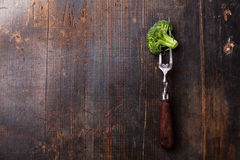 Fresh broccoli on fork Royalty Free Stock Photos
