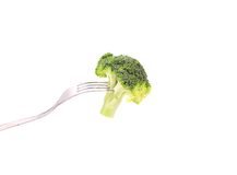 Fresh broccoli on a fork. Stock Photography