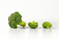 Fresh broccoli head and pieces Royalty Free Stock Image