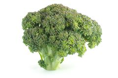 Fresh broccoli isolated on white Royalty Free Stock Photos