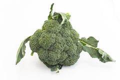 Fresh broccoli isolated on white.  Stock Photography