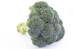 Fresh broccoli isolated on white Stock Image