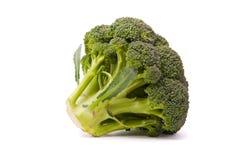 Fresh broccoli isolated on white background Stock Images