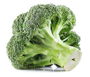 Fresh Broccoli isolated Stock Images