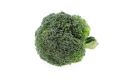 Fresh broccoli isolated royalty free stock images