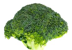 Fresh broccoli isolated on white background. With clipping path. Full depth of field Royalty Free Stock Photo