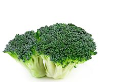 Fresh broccoli isolated on white background. With clipping path. Full depth of field Stock Photography