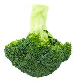 Fresh broccoli isolated on white background. With clipping path. Full depth of field Royalty Free Stock Images