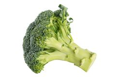 Fresh broccoli isolated on white background Royalty Free Stock Images