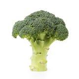 Fresh broccoli isolated on white Stock Photos