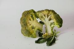 Fresh broccoli with leaves Royalty Free Stock Photography