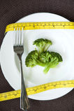 Fresh broccoli in plate Royalty Free Stock Image