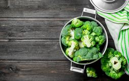 Fresh broccoli in the pot royalty free stock images