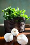 Fresh Broccoli Rabe and garlic Royalty Free Stock Image
