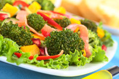 Fresh Broccoli Salad Royalty Free Stock Photography