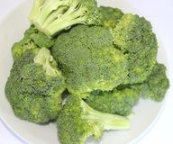 Fresh broccoli Stock Photography