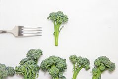 Fresh broccoli sprouts, a fork on left side on white cloth for the dining table, space for text. Sequence of broccoli florets like trees, healthy diet concept Royalty Free Stock Images