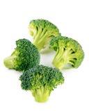 Fresh broccoli  on white background Stock Images