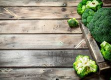 Fresh broccoli in a wooden box. On a wooden background royalty free stock photos
