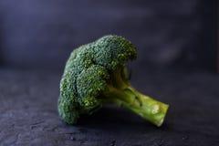 Fresh brocoli on a black matte background.  royalty free stock photo