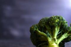 Fresh brocoli on a black matte background.  stock photos
