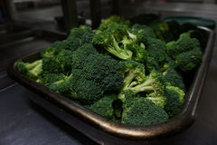 Fresh Brocoli stock images
