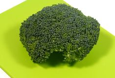 Fresh brocoli vegetable Stock Image
