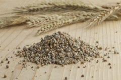 Fresh broken rye seeds Royalty Free Stock Photo