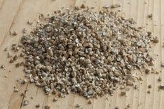 Fresh broken rye seeds Stock Image