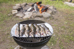 Fresh brook trouts on the grill Royalty Free Stock Photo