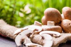 Fresh brown Agaricus mushrooms Royalty Free Stock Photography