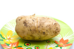 Fresh Brown Big Potato Royalty Free Stock Images