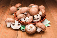 Fresh brown champignons Royalty Free Stock Image