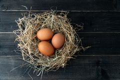 Fresh brown chicken eggs in hay nest on black wooden background. Concept of organic eggs, free space for text or other elements.  royalty free stock image