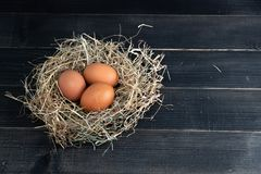 Fresh brown chicken eggs in hay nest on black wooden background. Concept of organic eggs, free space for text or other elements.  royalty free stock photos