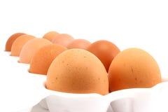 Fresh brown chicken eggs Royalty Free Stock Photos