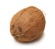 A fresh brown coconut on a white background Royalty Free Stock Photography
