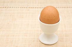 Fresh Brown Egg Royalty Free Stock Image