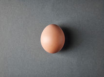 Fresh brown egg on gray background Royalty Free Stock Photography