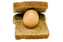 Fresh Brown Egg with Toast Bread. On white background Stock Photography